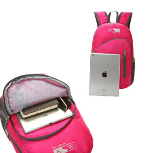 Color Light Back Pack with Two Shoulders for School Adult pictures & photos