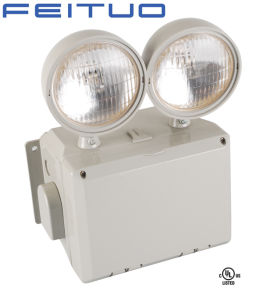 Emergency Lighting pictures & photos