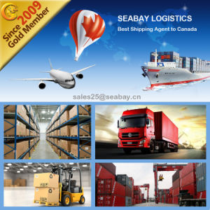Cheap LCL/FCL Shipping From Shanghai to Montreal pictures & photos