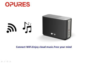 OPURES Wireless WiFi Subwoofer Music PA Speaker