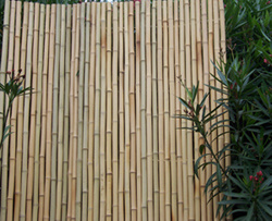 Bamboo Fence pictures & photos