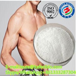 CAS 129954-34-3 Medicine Grade Selank Powder for Promote Muscle