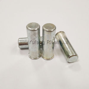 Zinc Plating Small Head Knurled Body Rivet Nut with Closed End pictures & photos