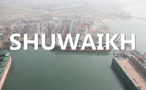 Express From Qingdao, China to Shuwaikh, Kuwait pictures & photos
