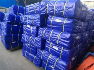 Factory Price HDPE Tarp for Tents Tb017 pictures & photos