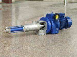 Xinglong Micro Single Screw Pump for Auxiliary Flocculants and Chemicals in Wastewater Treatment pictures & photos