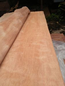 Good Quality Gurjan Veneer with Big Quantity pictures & photos