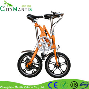 Pedelec Folding E Bike with 7-Speed Derailleur pictures & photos