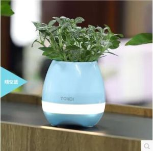 Bluetooth Smart Music Flower Pots Intelligent Real Plant Touch Play Music Flowerpot pictures & photos