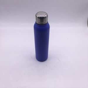 High Quality Double Wall Stainless Steel Thermos (SH-VC28) pictures & photos