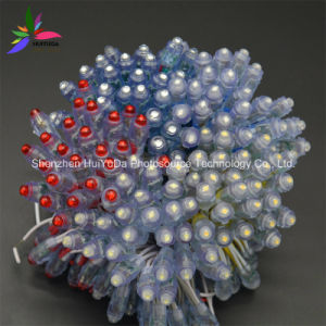 Waterproof All Color LED Pixel Light 12mm F8 DC5V LED Pixel pictures & photos
