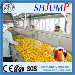 Canned Pineapple Production Line pictures & photos