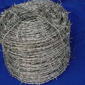 Hot Dipped Galvanized Razor Barbed Wire (XA-RB2) pictures & photos