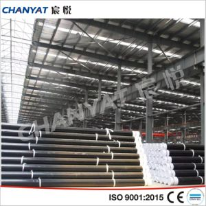 ASTM API EN ISO Seamless Stainless Steel Pipe pictures & photos