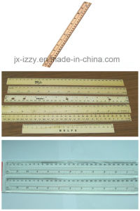 Plastic Ruler Pad Printer for 400mm pictures & photos