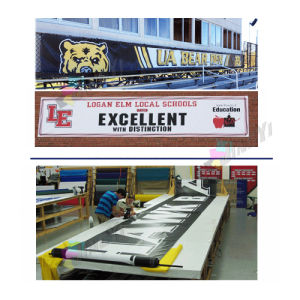 custom cheap promotion/advertising PVC banner factory pictures & photos