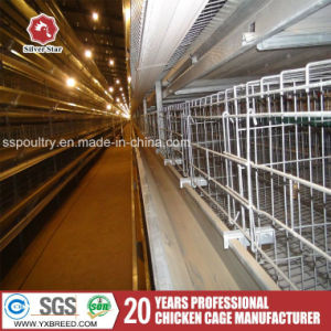 Wire Mesh Steel Poultry Farming Equipment Egg Chicken Battery Cage pictures & photos