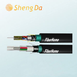 Long Distance and Building Network Communication Fiber Optic Cabling pictures & photos