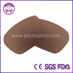 Brand Sunglasses Lenses pictures & photos