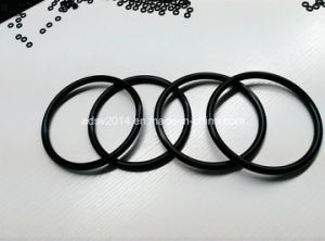 Rubber NBR FKM/Viton O Rings for Pump/Car pictures & photos