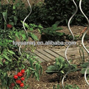 Factory Supply Steel Durable Spiral Tomato Metal Rod pictures & photos