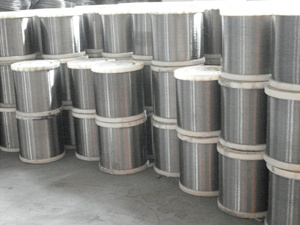 202, 301, 302, 304, 304L 316L Steel Stainless Wire pictures & photos