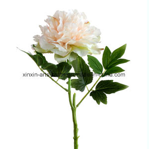 Factory Wholesale Single Stem Fake Peony Artificial Flowers with 2sets of Leaves pictures & photos