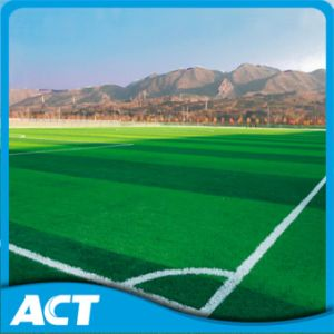 First Artificial Grass Factory for 15 Years Durable Two Stem Artificial Football Grass Soccer Grass Sports Field SMD50 pictures & photos