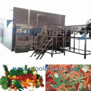Frozen Vegetables IQF Tunnel Freezer pictures & photos