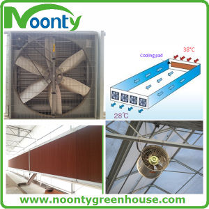 Evaporated Pad with Cooling Fan pictures & photos
