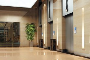 Fujizy-High Quality and Safety Gearless Passenger Elevator pictures & photos