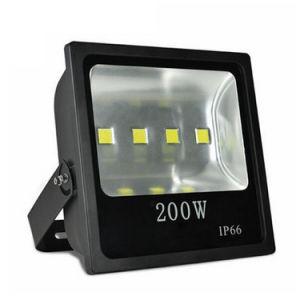 160W COB LED Floodlight Outdoor Cheap Light 110V 220V (100W-$15.83/120W-$17.23/150W-$24.01/160W-$25.54/200W-$33.92/250W-$44.53) 2-Year Warranty pictures & photos