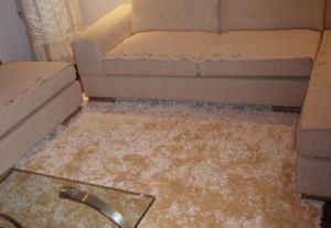 Luxury Shiny Chenille Shag Floor Carpet Living Room Carpet pictures & photos
