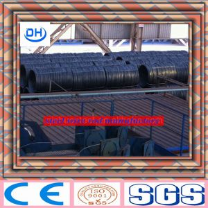 Carbon Steel Wire Type pictures & photos