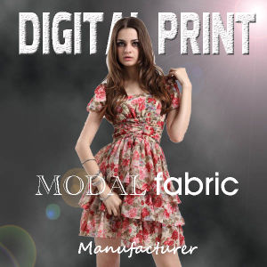 Custom Modal Silk Fabric Digital Printing for Dress (X1110) pictures & photos
