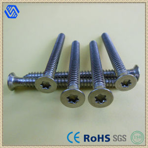 Titanium Countersunk Head Hex Screws (BL-0147) pictures & photos