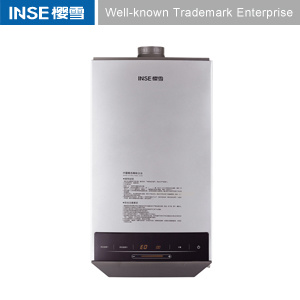 Forced Type 10L Gas Water Heater (QH1004)