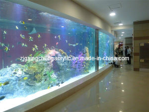 Acrylic Fish Tank / Acrylic Sheet Manufacturer pictures & photos