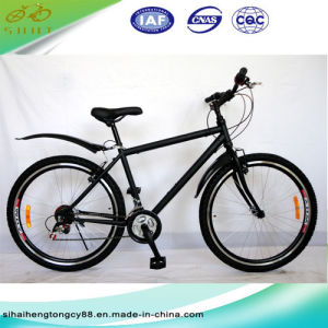 Black Steel Mountain Bicycle/Bike for Boy (SH-MTB071) pictures & photos