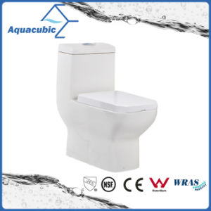 Siphonic One Piece Dual Flush Square Front Bowl Toilet (ACT8825) pictures & photos