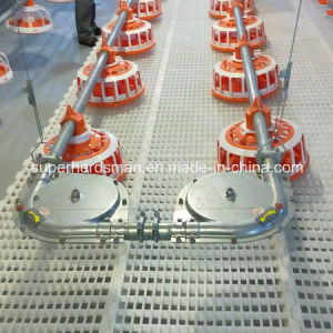 High Quality Automatic Feeding System for Chicken pictures & photos