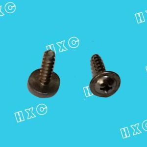 Pan Head Phillips with Washer Self Tapping Screw