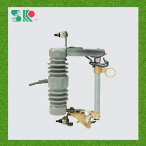 High Voltage Fuse Cut out 12kv (RW12) pictures & photos