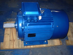 Y2 Series Three Phase AC Motor pictures & photos