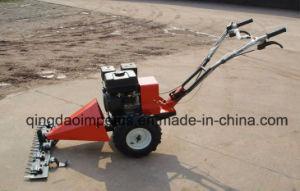 120cm EEC Petrol Sickle Mower GS-120 pictures & photos