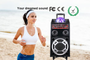Ce and RoHS Portable Mulit-Function PA Amplifier Trolley Speaker pictures & photos