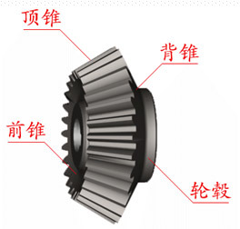 Bevel Gears Stainless Forged Spiral Gear pictures & photos
