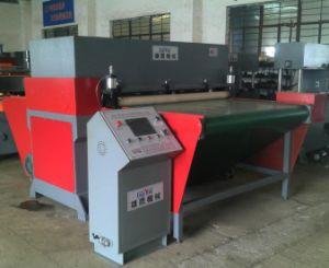 Auto Conveyor Belt Feeding Hydraulic Die Punching Machine (XYJ-3/100) pictures & photos