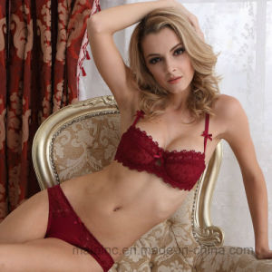 Hot Selling Comfortable Lace Ladies Bra and Brief Set pictures & photos