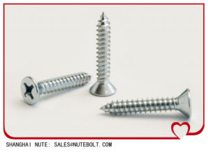 Stainless Steel Self Tapping Screw DIN7982 pictures & photos